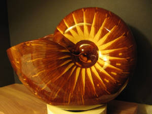 Aromatic Red Cedar Nautiloid